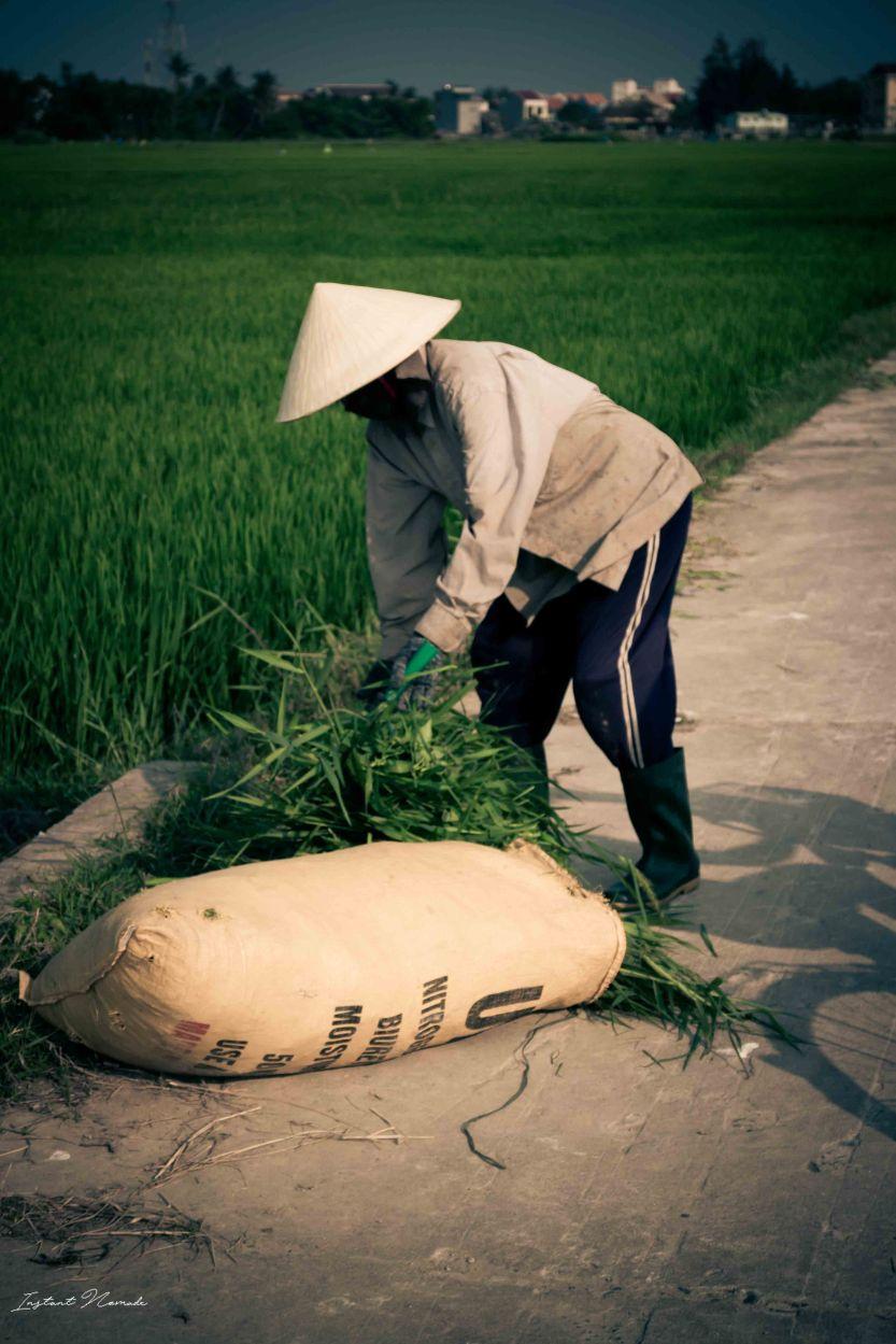 Hoï An Vietnam (18)