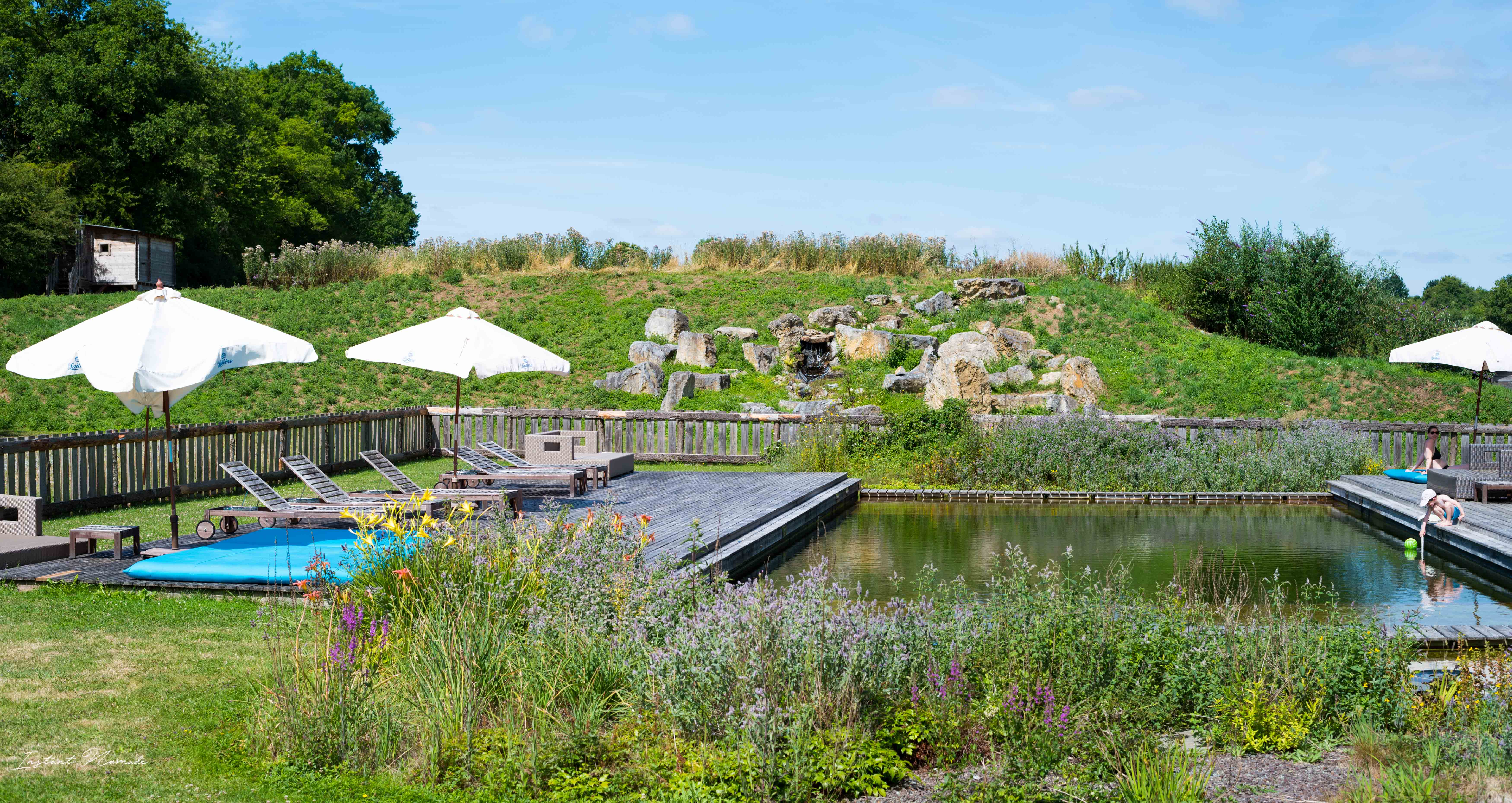 ecologia piscine naturelle