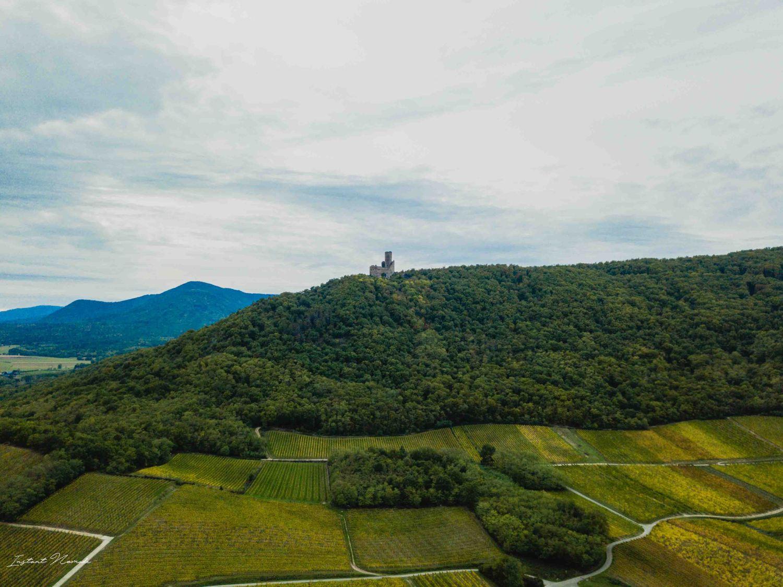 drone vue chateau vigne