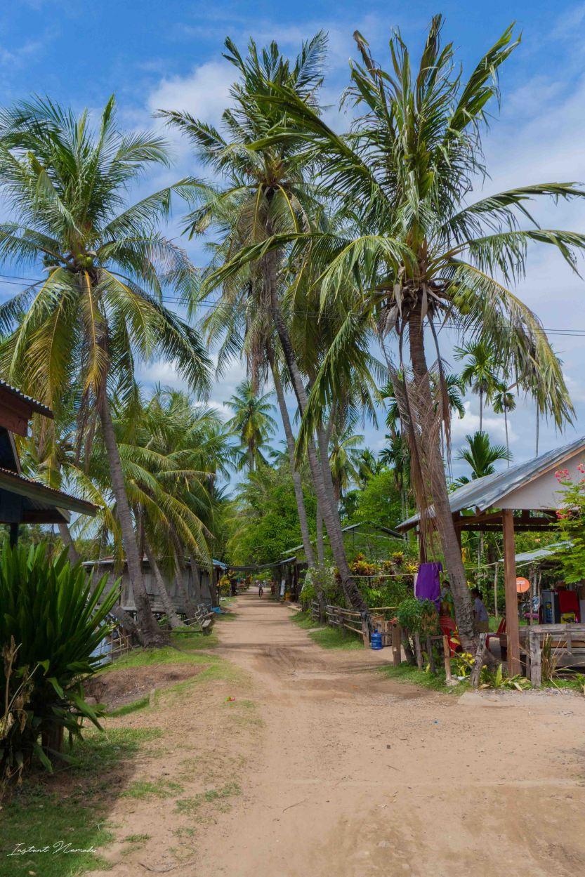 paysage 4000 iles laos