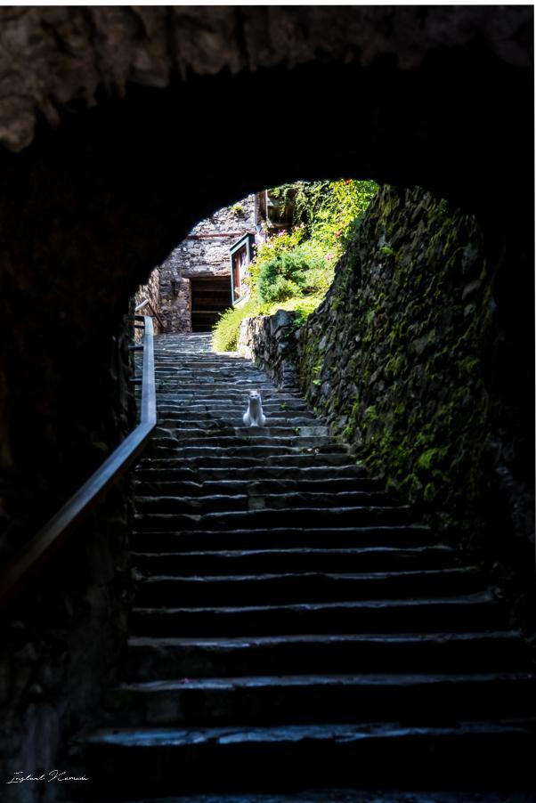 escalier friesach autriche