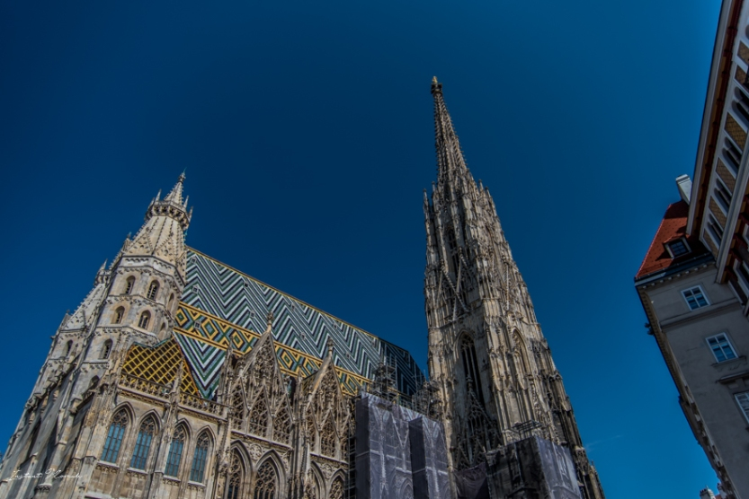 stephansdom_cathedrale_vienne