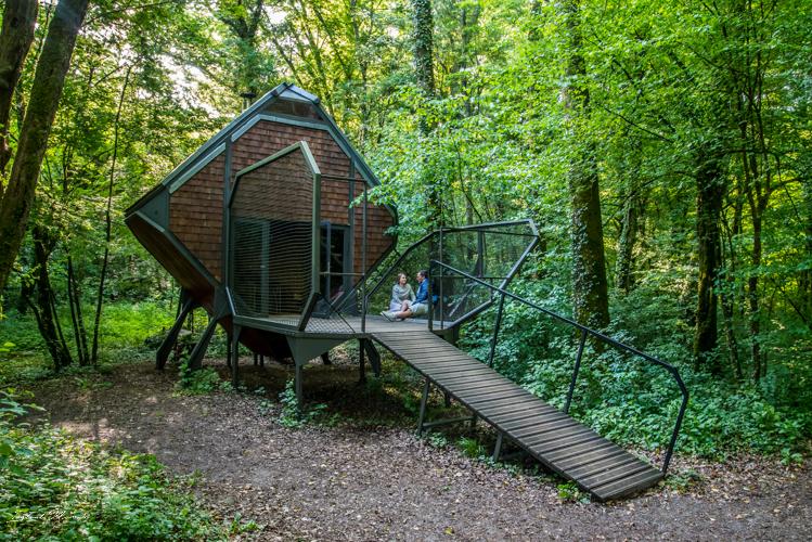 logement le nichoir vent des forêts