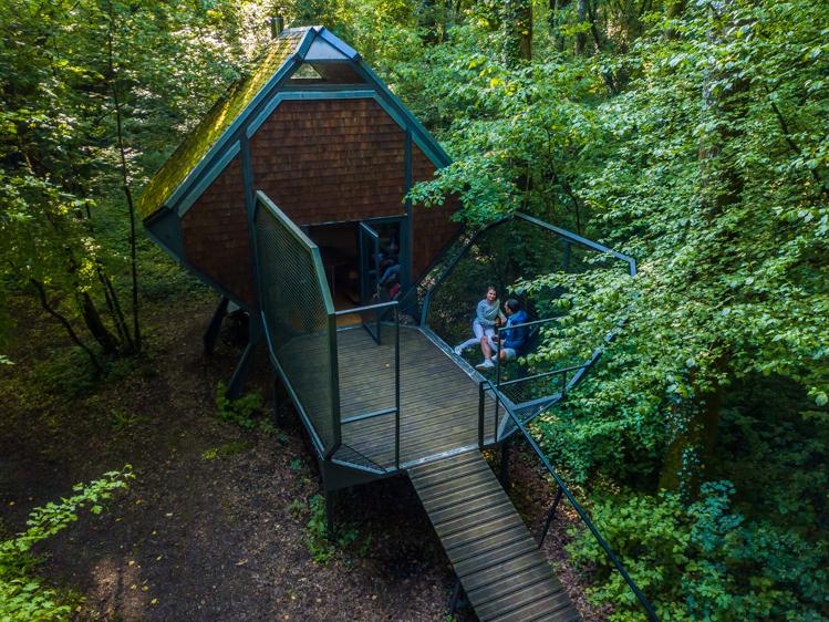 vue du nichoir vent des forêts