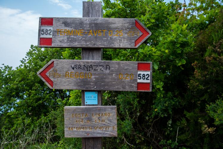 chemin randonnée cinque terre