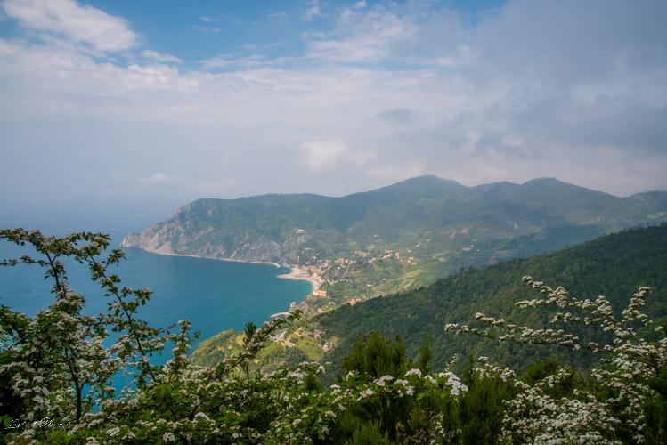 randonnée monterosso cinque terre