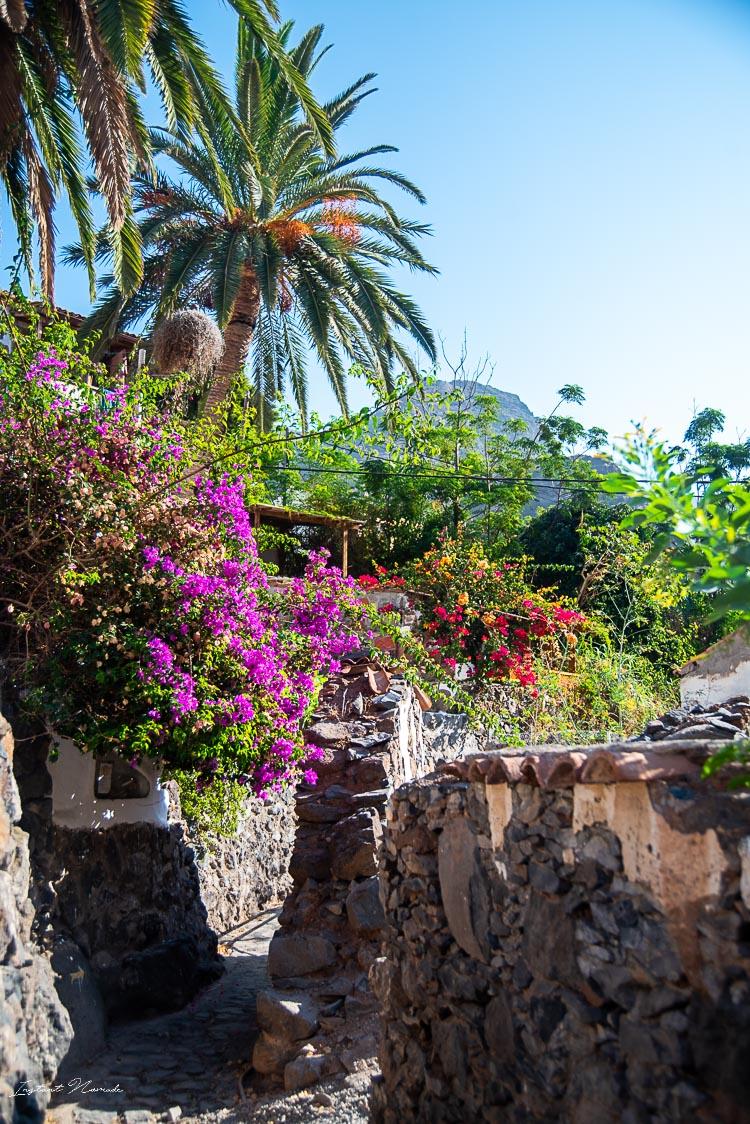 randonnee cascade village gomera