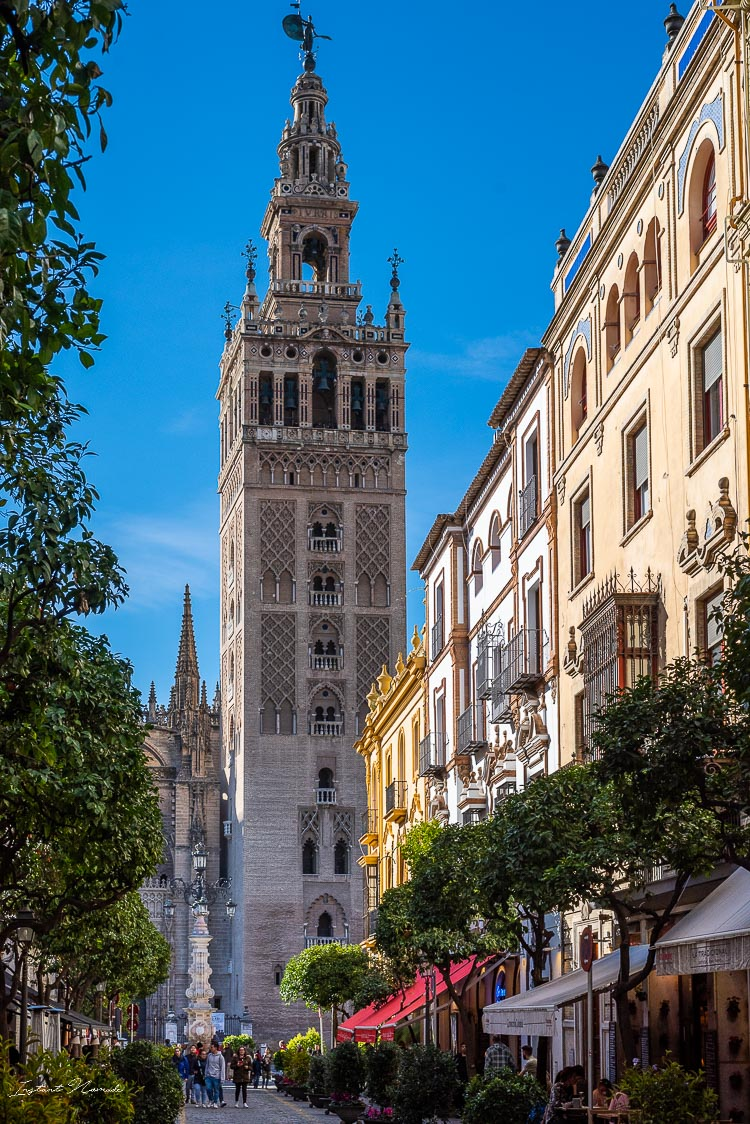 tour cathedrale seville
