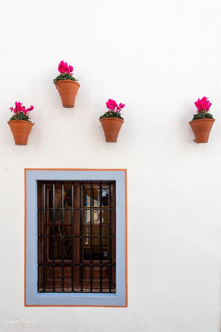 façade fleur cordoue andalousie
