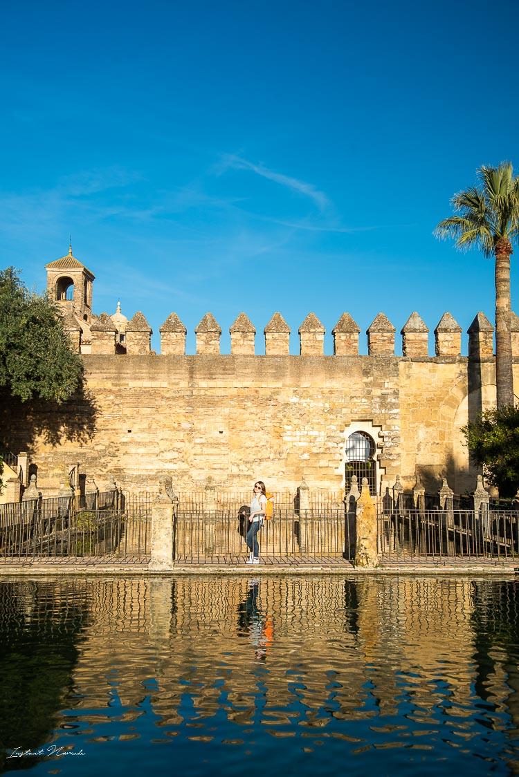 palais royal cordoue andalousie