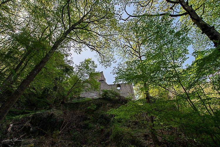chateau hagueneck alsace