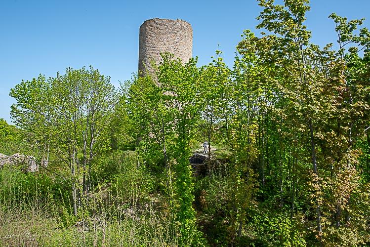 ruines chateau pflixbourg