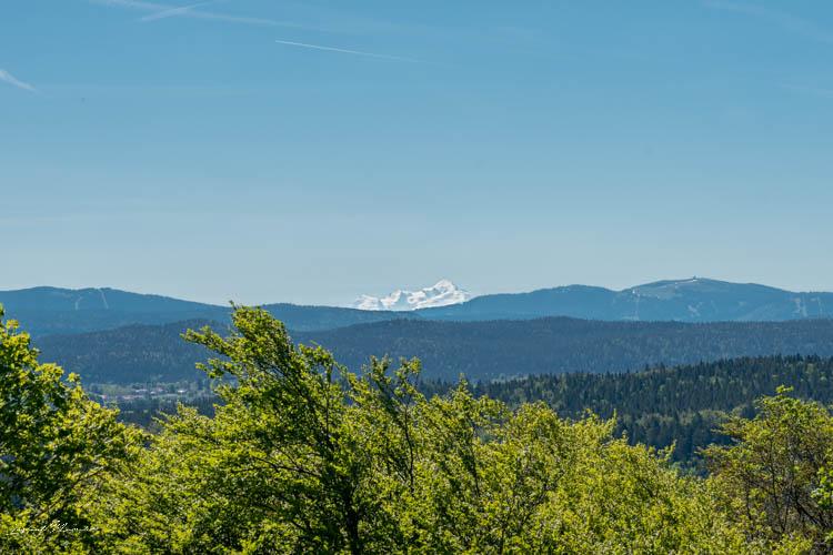 vue_mont_blanc_randonnee_belvedere_des_4_lacs_jura (2)