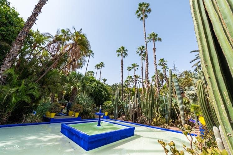 fontaine jardin majorelle marrakech