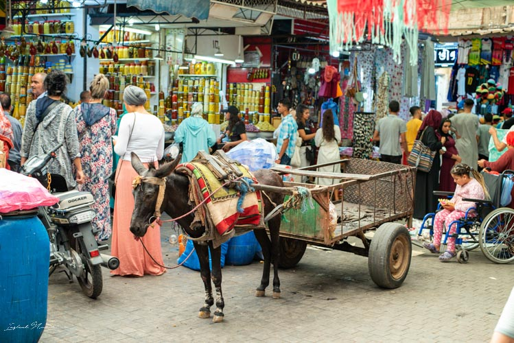 marché marrakech