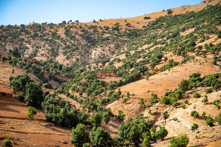 paysage route maroc