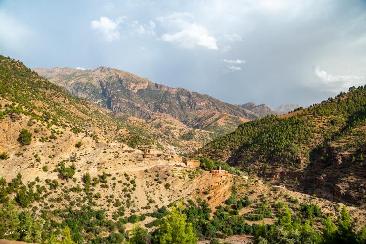 paysage vert maroc