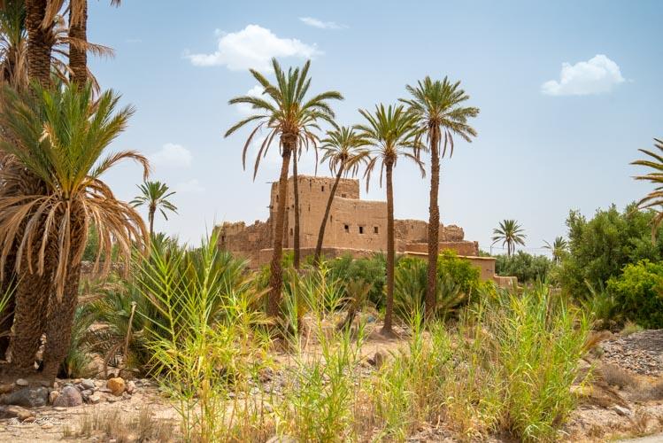 kasbah palmeraie skoura