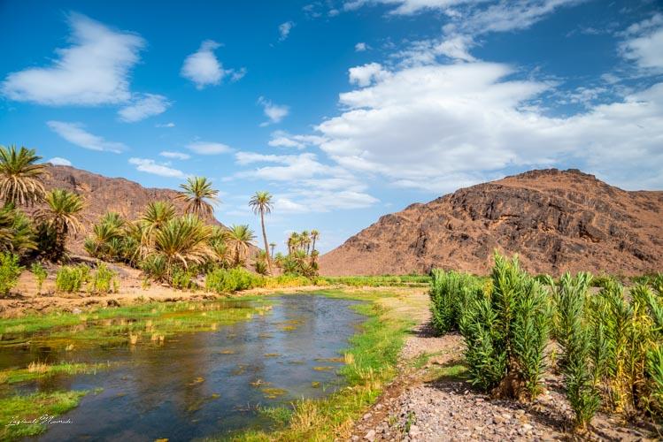 oasis fint maroc