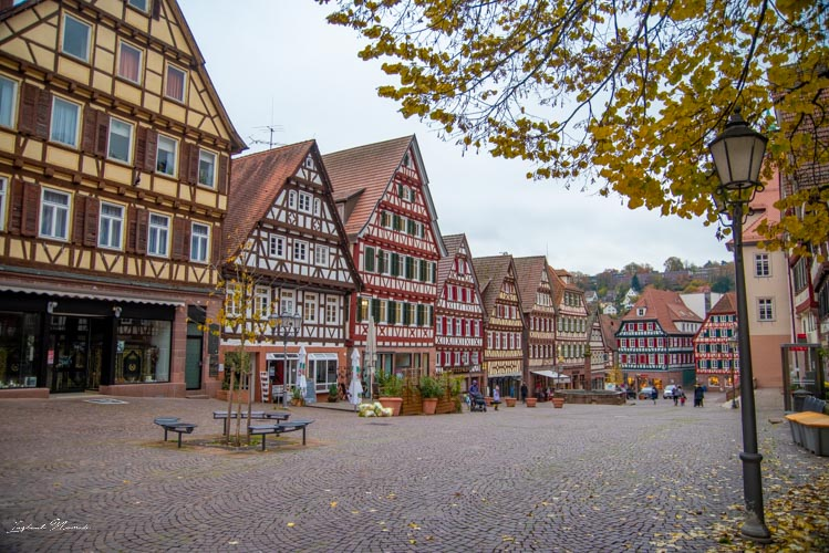 place calw
