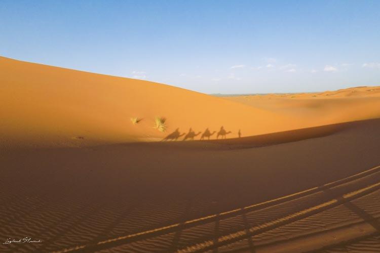 ombre désert maroc