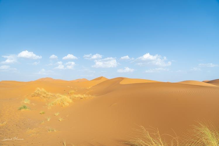 désert merzouga maroc