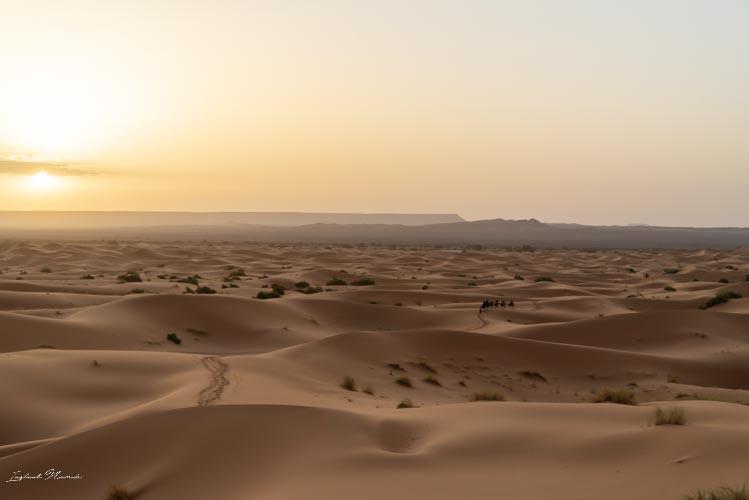 dunes de sable désert maroc