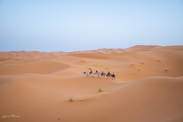dunes erg chebbi désert