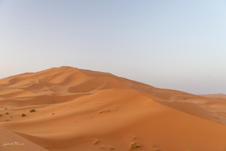 dunes orangées maroc