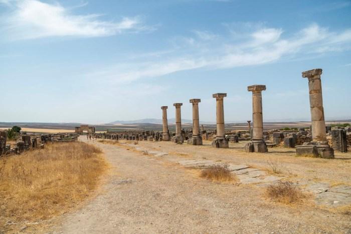 colonnes volubilis maroc