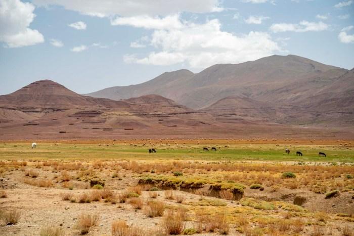 imilchil maroc