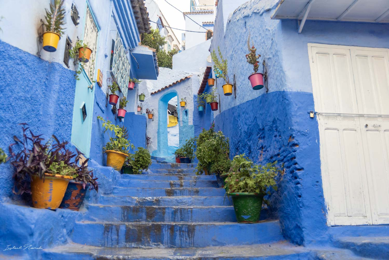 maisons bleues chefchaouen
