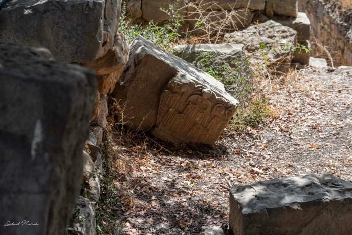 ruines volubilis