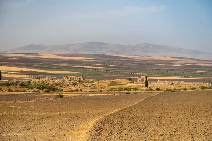 volubilis maroc