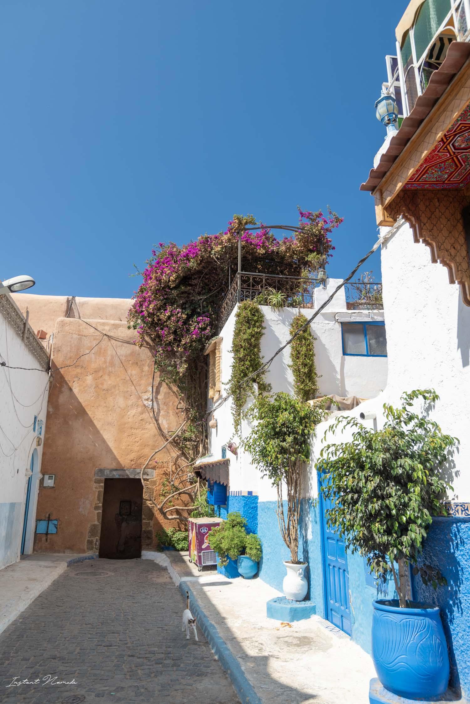 ruelle kasbah des oudayas rabat