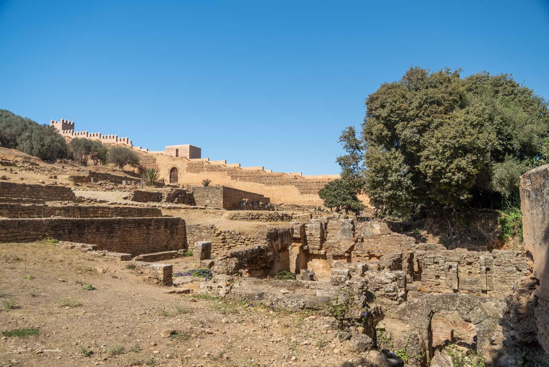 ruines nécropole de chellah rabat maroc