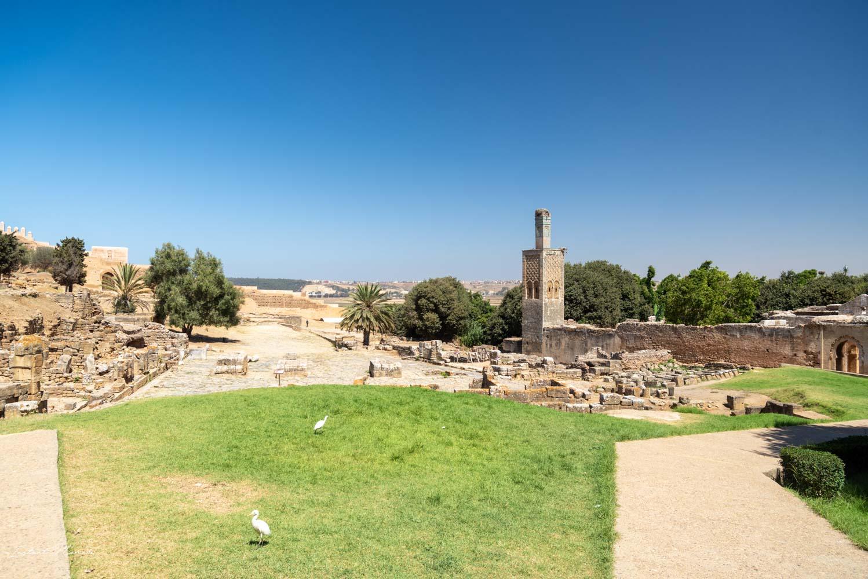 site nécropole de chellah rabat maroc