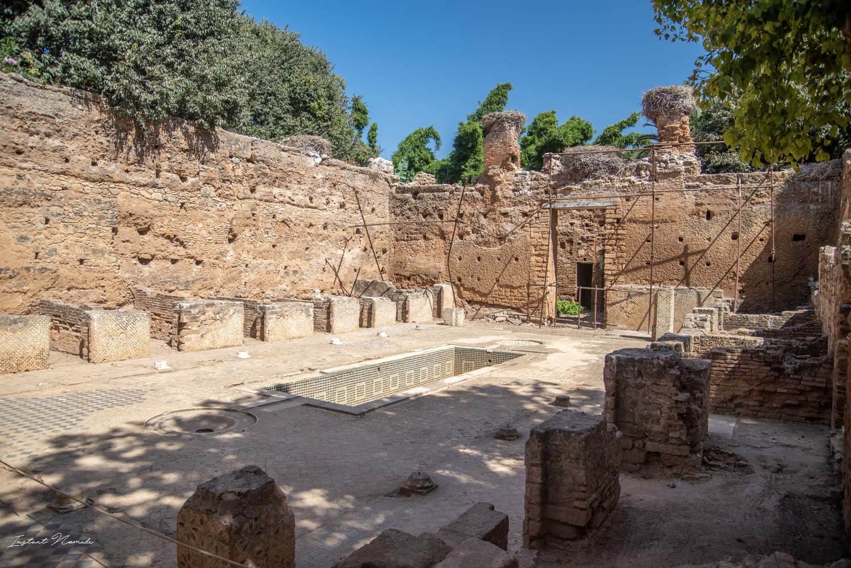 vieilles pierres nécropole de chellah rabat maroc