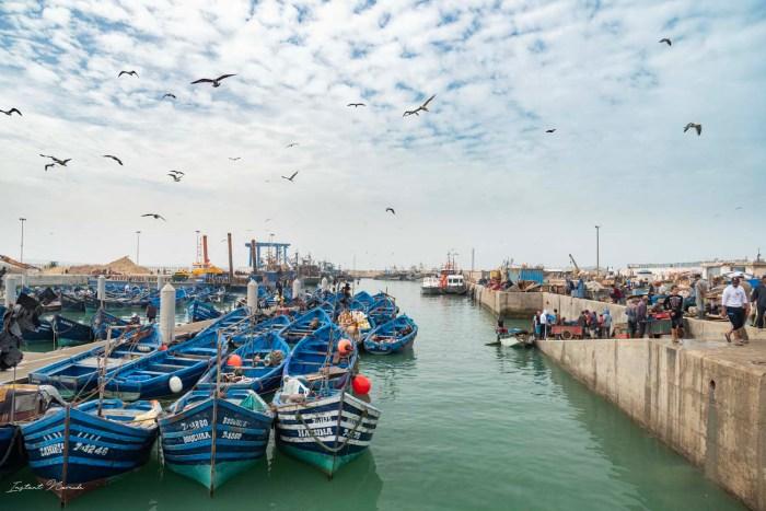 bateau essaouira maroc