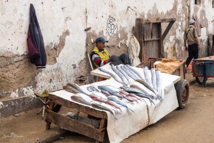 poisson essaouira maroc