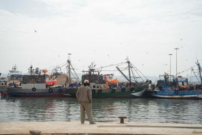port bateau essaouira maroc