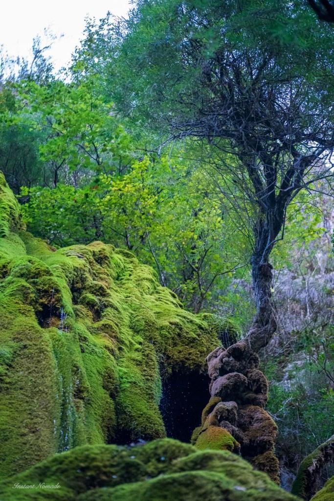 cascade verte vercors